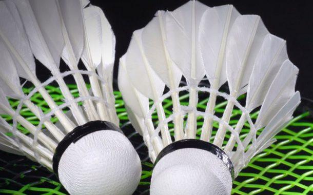Badmintono piramidės turnyrai nuotrauka